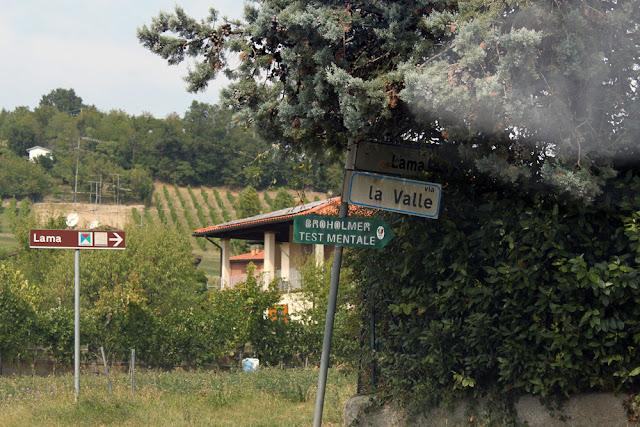 Bologna, Valsamoggia - Viinitarhoja ja koirahommia 15