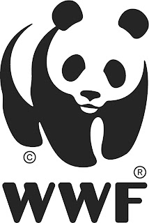 Intern – Wildlife case Collection and Analysis, WWF Cameroon