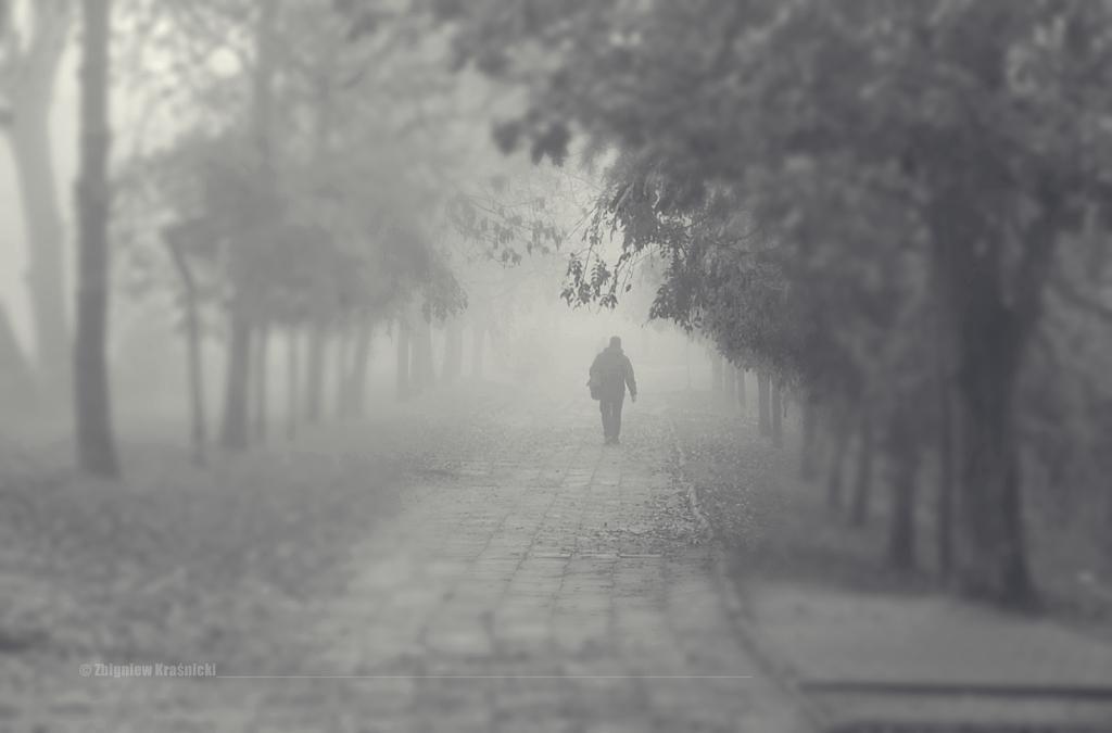Olsztyn, park Kusocińskiego we mgle