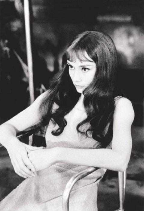 Audrey Hepburn Hairstyles  Hairstylo