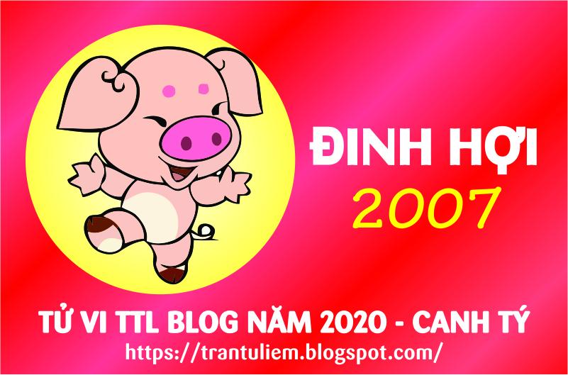 TỬ VI TUỔI ĐINH HợI 2007 NĂM 2020