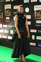 Rakul Preet Singh Sizzles in a Sleeveless Dress at IIFA Utsavam Awards 2017  Day 2  Exclusive 82.JPG
