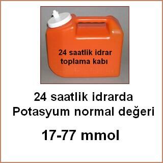 24 saatlik idrar normal değer