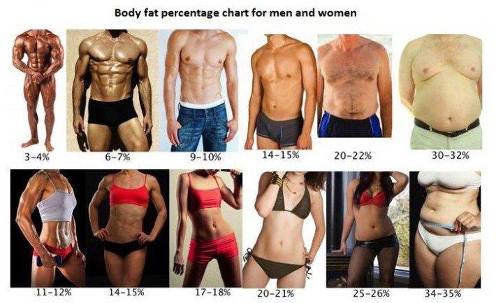 Se puede adelgazar y aumentar masa muscular photo 5