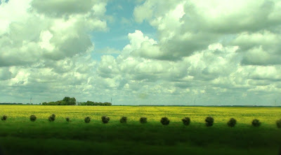Wide open prairie from the road