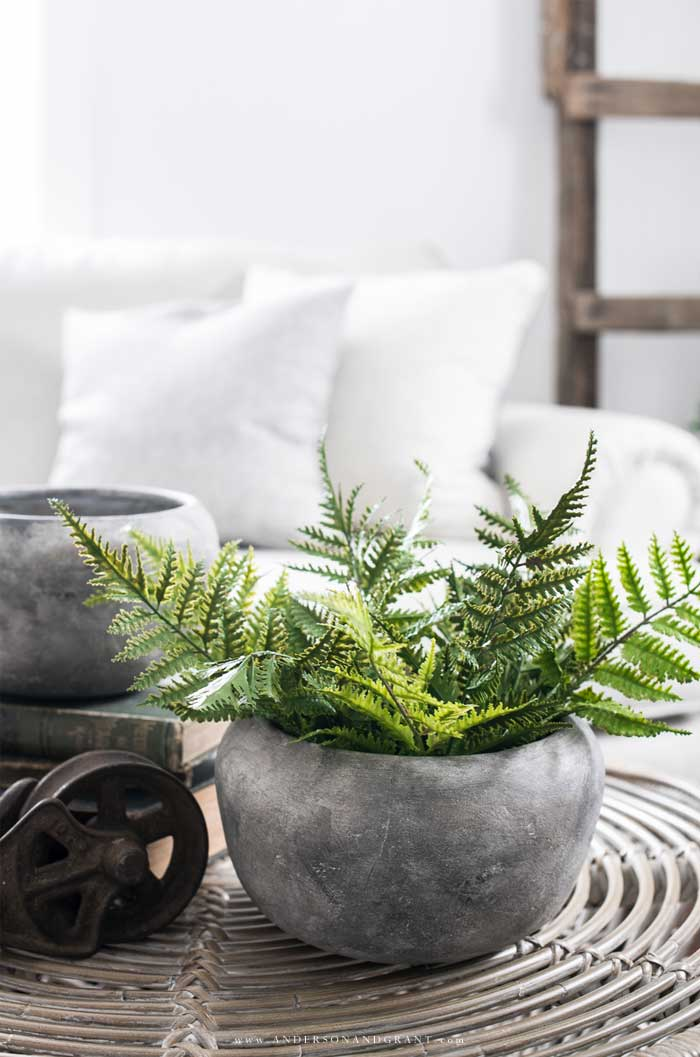 Gray urn with ferns