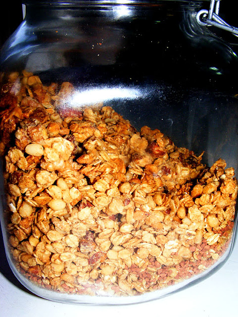 Homemade granola. Photo by Loire Valley Time Travel.