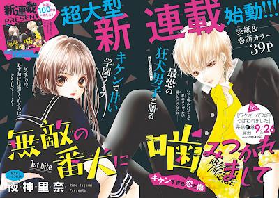 Rina Yagami lança mais uma série na ShoComi