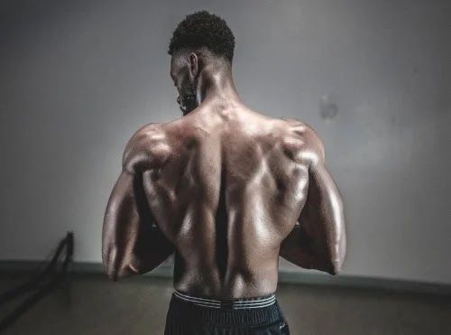 Best Exercises For Back