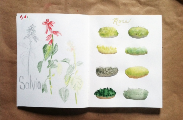 #2x2sketchbook, 2x2, sketchbook, nature journal, Anne Butera, Dana Barbieri