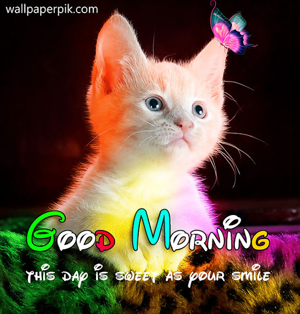 most downloaded Good Morning foto Profile Pictures
