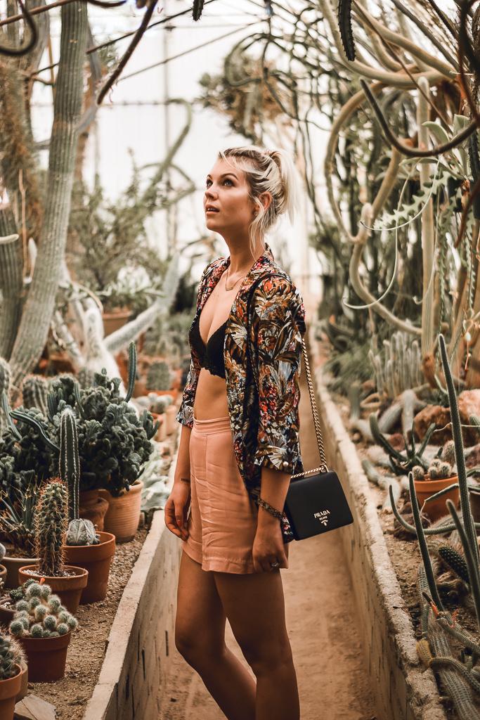 moorten botanical garden review