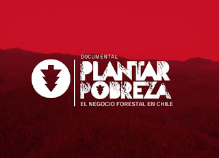 Plantar Pobreza, El negocio forestal en Chile
