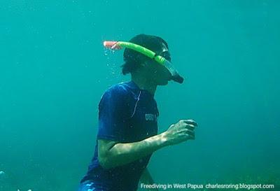 Brica BPro5 underwater picture
