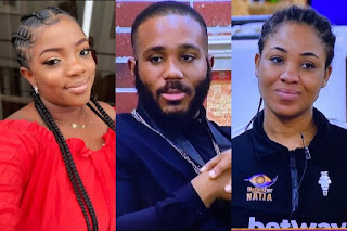 #BBNaija2020: 'Don't Pull The Stunt Again' - Erica Warns Kiddwaya For Touching Dorathy's Br*asts
