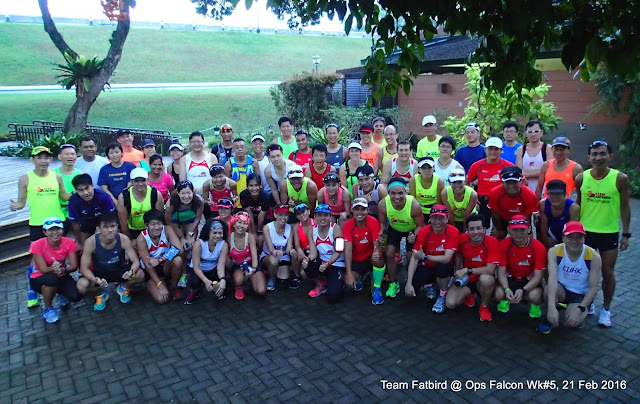 Sundown Marathon Pacers & Falcon Runners