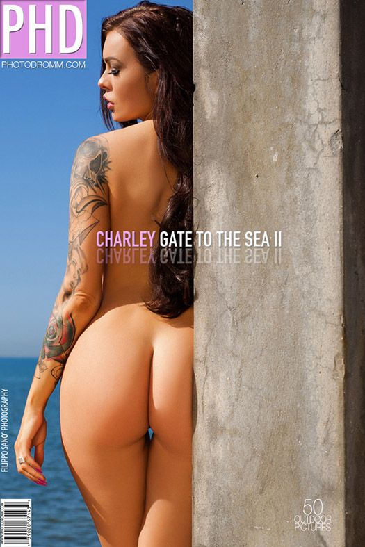 PhotoDromm - Charley - Gate To The Sea 2