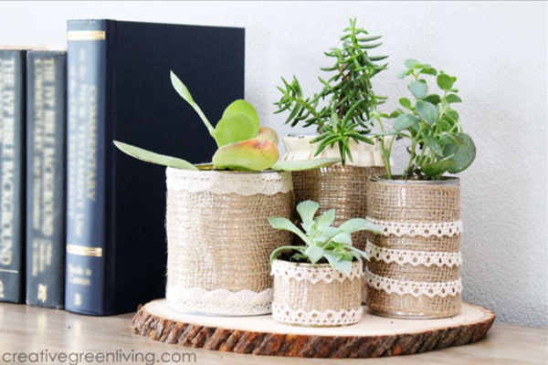 Make Recycled Succulent Planters - Creative Green Living