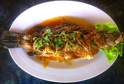 Roter Snapper an Curry Sauce