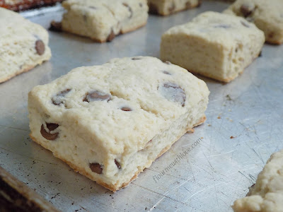Rich delicious cream cheese make these chocolate chip scones tender, flaky, and oh so amazing!