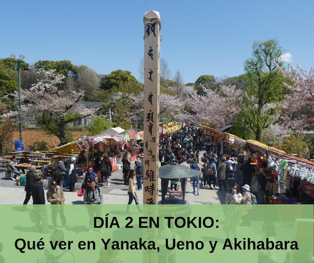 dia 2 en tokio, que ver en yanaka, ueno, akihabara