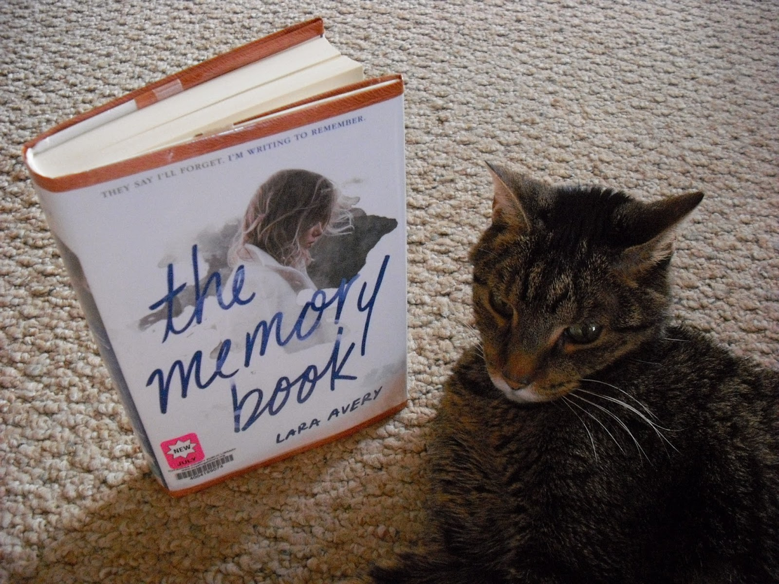 the memory book lara avery pdf