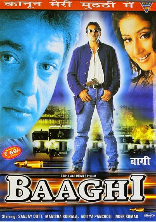 Baaghi 2000 Full Hindi Movie Download HDRip 720p