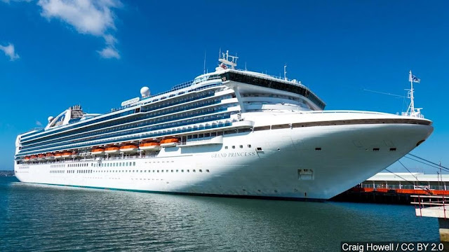 49 Nevada residents on virus-hit cruise ship to return to state