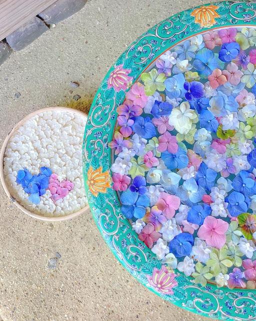 Macetas de flores flotantes desde arriba