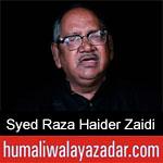 https://www.humaliwalayazadar.com/2019/10/syed-raza-haider-zaidi-nohay-2020.html