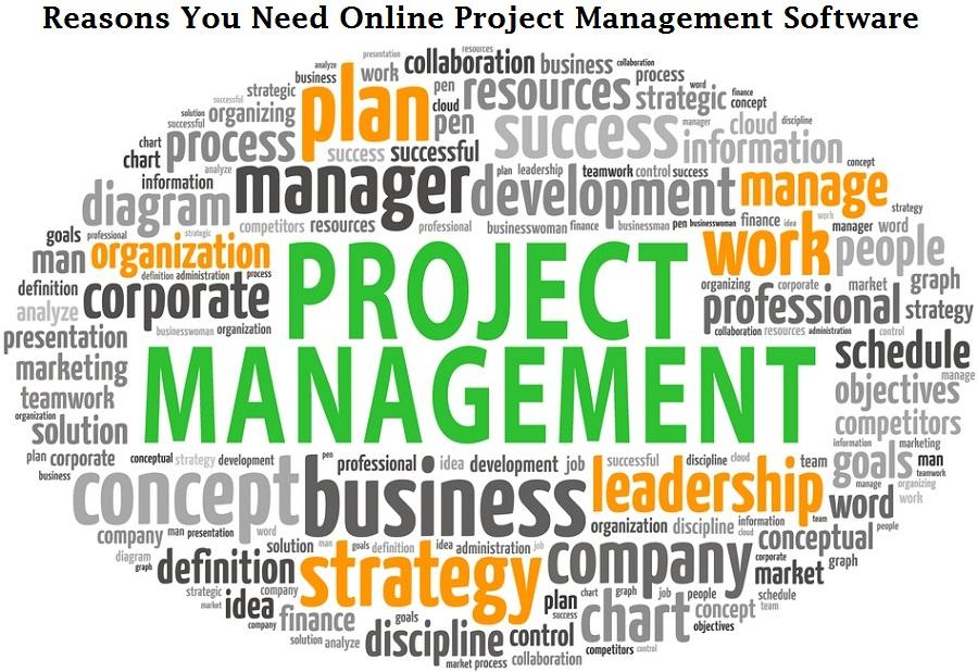 Online Project Management Software