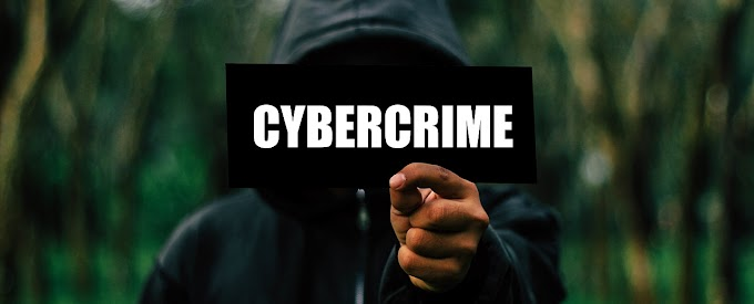 The expert assessed the prospects of cybersecurity company Group-IB after the arrest of its founder