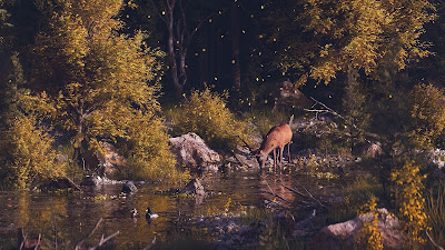 Screen background for free lone deer in the autumn forest
