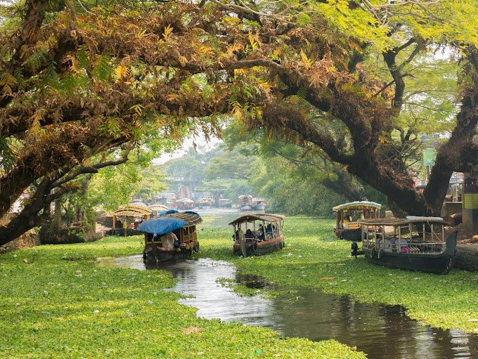 Explore the real beauty of Kerala with IND Wonders | Best travel guide