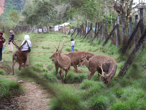 5 Tempat Wisata Edukasi di Bandung Seru yang Wajib Kamu Coba