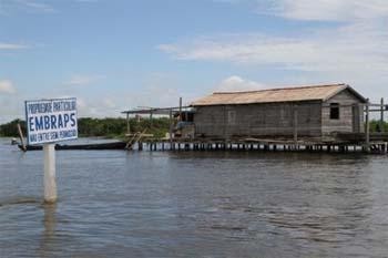 Tribunal mantém suspensão do licenciamento do porto de Maicá, em Santarém