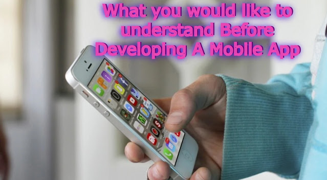 What you would like to understand Before Developing A Mobile App