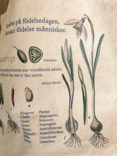 Snowdrop canvas tote bag designed like a vintage or antique stamp.