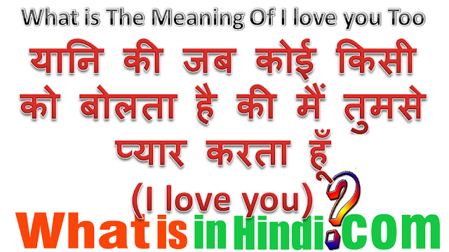 i love you so much in hindi