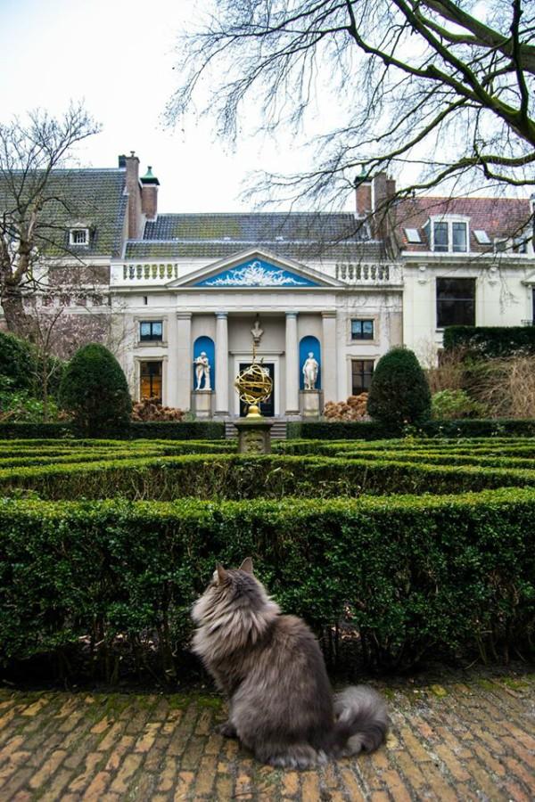 museum van loon amsterdam