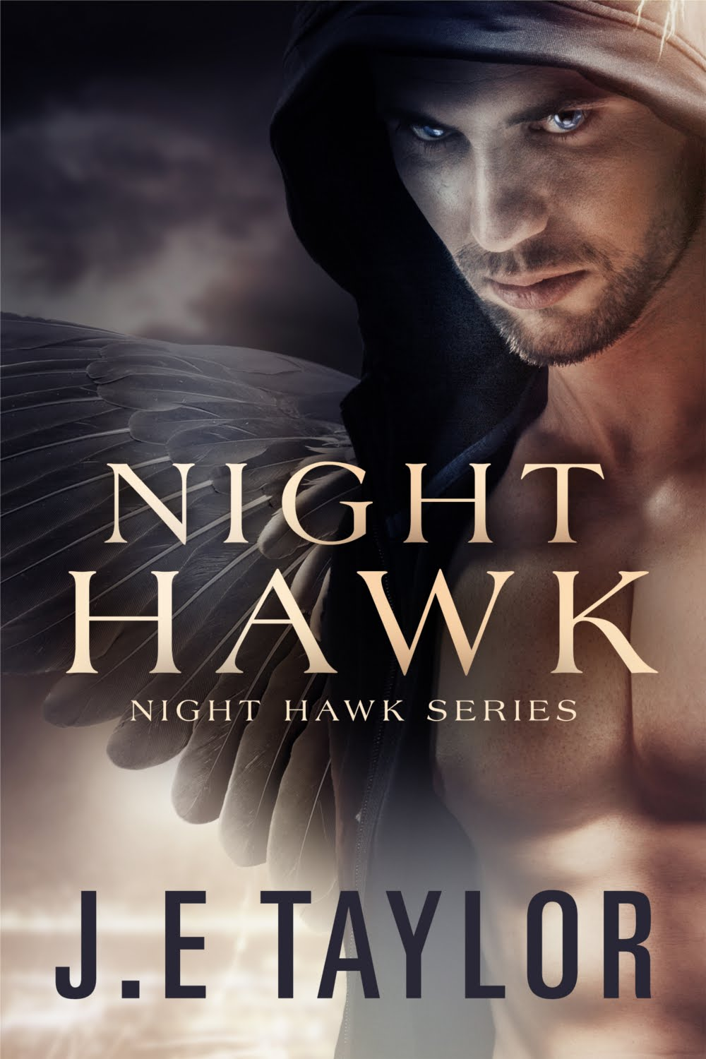 Night Hawk 1