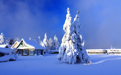 Snowfall Background Images free downloads