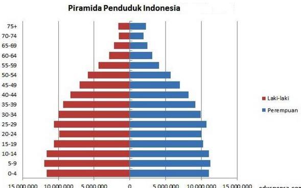 Piramida Penduduk Muda