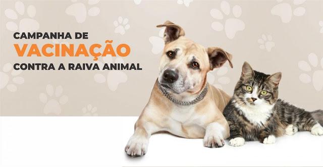 Dia D da vacinação contra raiva em animais acontece no sábado