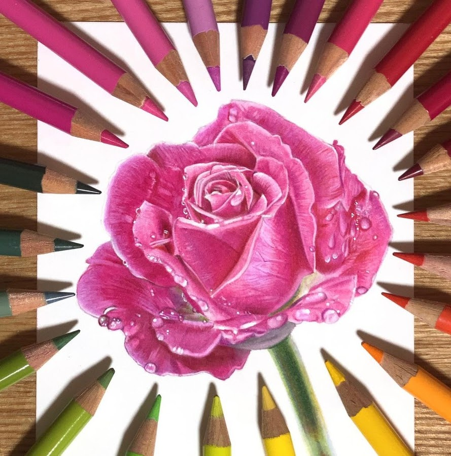 06-Rose-and-water-droplets-Keito-www-designstack-co