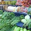 Impor Sayuran Rp11,5 Triliun, Pengamat: Janji Jokowi Setop Impor Omong Kosong