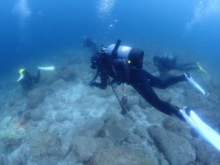 2021年6月13日の柏島ダイビング