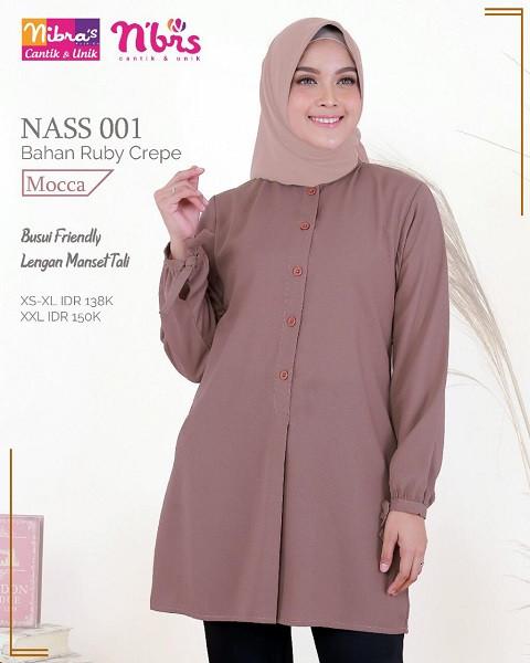 Nibra's NASS 001