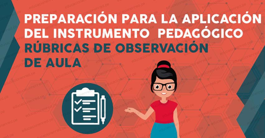 PERUEDUCA CURSOS VIRTUALES 2019: Inscripción «Preparación para la aplicación del instrumento pedagógico Rúbricas de observación de aula» www.perueduca.pe