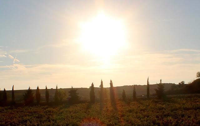 Paisajes Rioja Alta